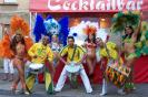 1. Internationales Samba Festival 2008